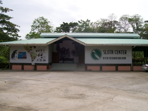 A Tour of the Only Sloth Rescue Center in the World | Costa Rica