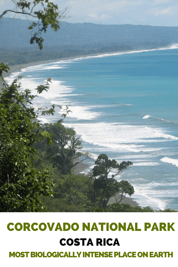 Corcovado National Park in Costa Rica - The Most Biologically Intense Place on Earth