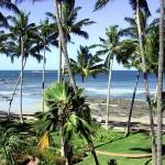 costa-rica-client's testimonial-beach