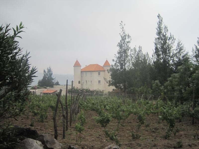 chateau-defay-wineyard-antigua-guatemala