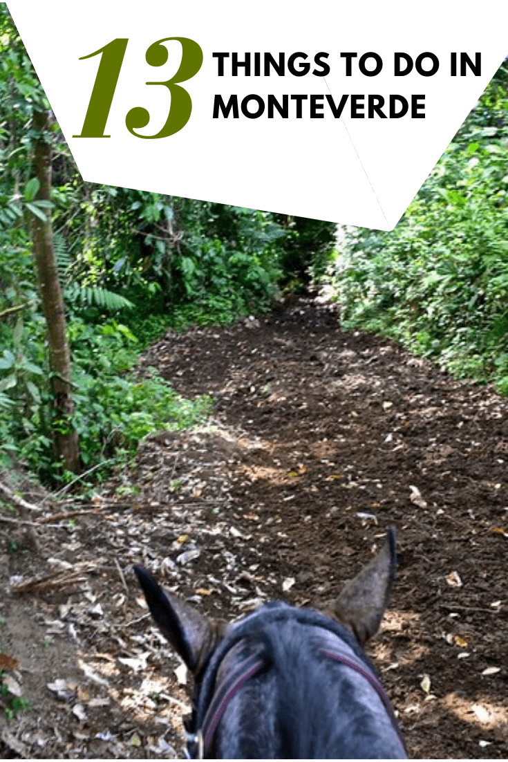 The Top 13 Things to Do in Monteverde, Costa Rica