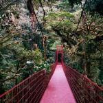 monteverde-hanging-bridges