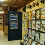 monteverde-insectarium-costa-rica