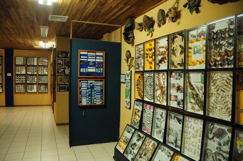 insectariums monteverde costa rica