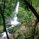 san-luis-waterfall-monteverde-costa-rica