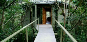 Amenities & Luxury Treehouse Boutique hotel in Monteverde Costa Rica