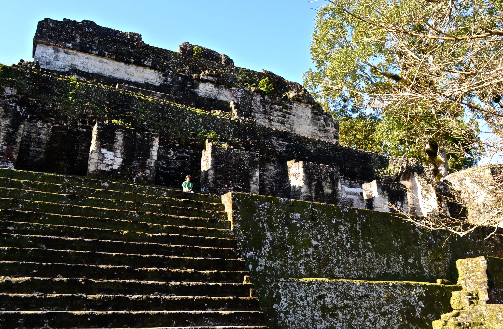 Top Facts About Tikal in Guatemala