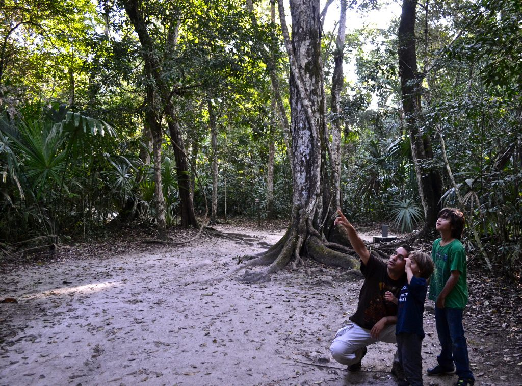teaching kids about wildlife spotting in guatemala and costa rica