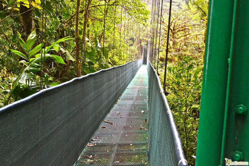 facts about monteverde cloud forest costa rica
