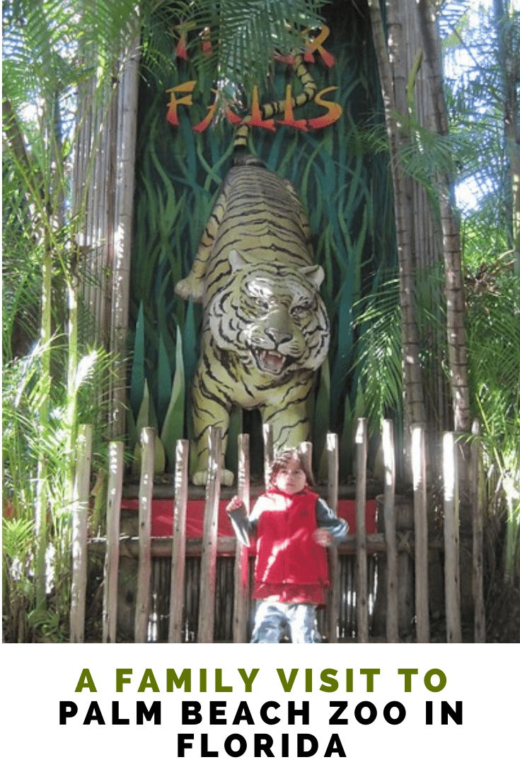 What to See and Do at Palm Beach Zoo in Florida