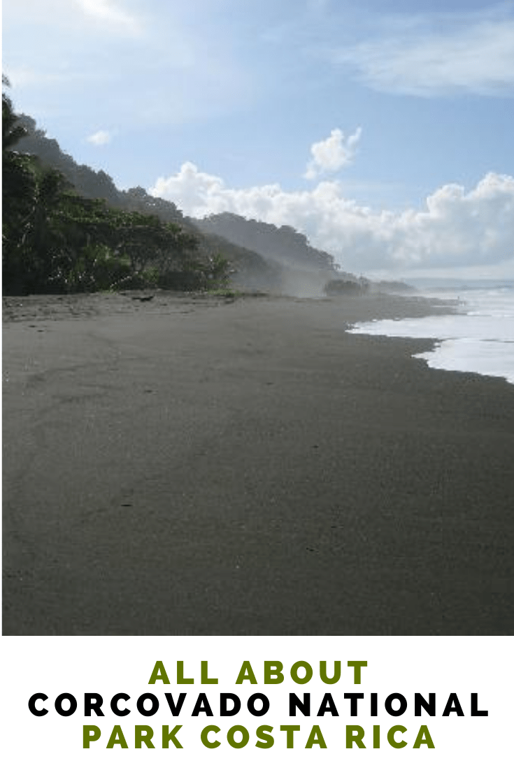 All About Corcovado Park Costa Rica | Travel ExpertaTravel Experta - Family Travel Blog