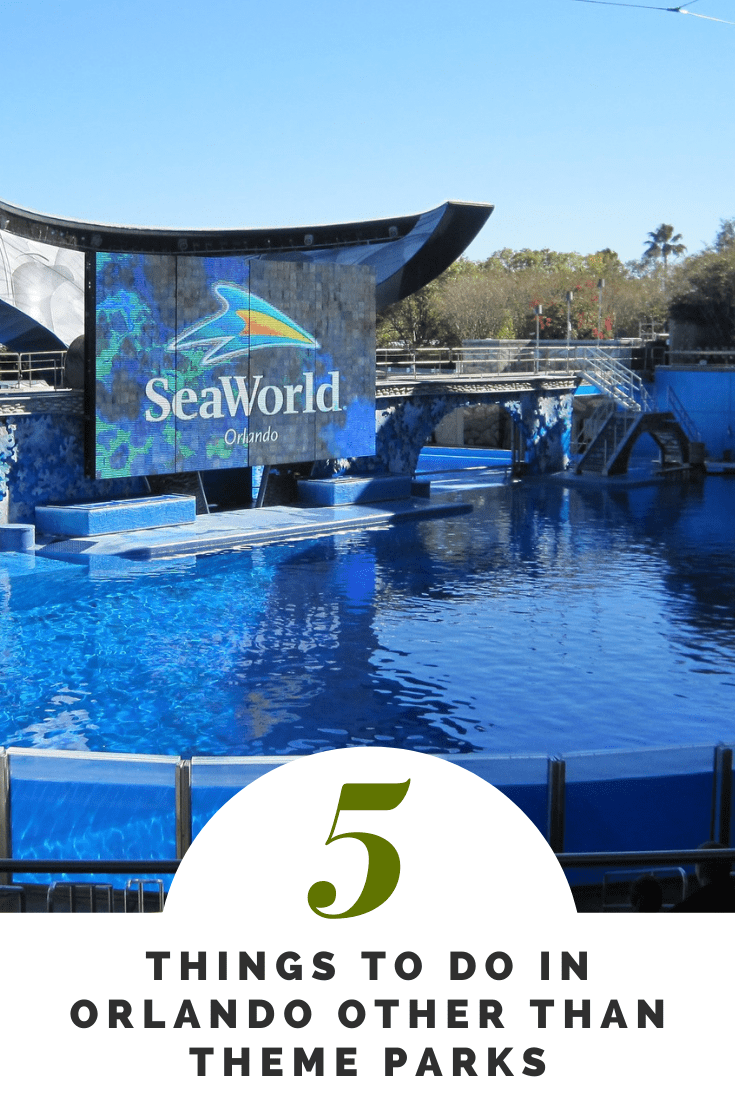 The Top 5 Things to Do in Orlando Florida
