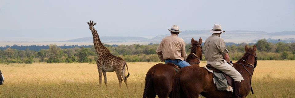 Kenya-Riding-Safari-Giraffe