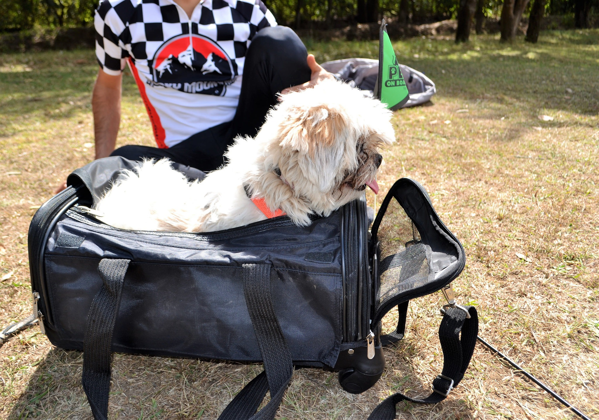 Small Dog Carriers - Sherpa Ultimate on Wheels Review