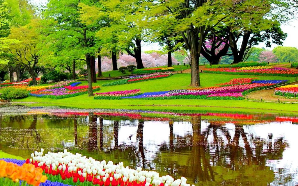 Places To Visit In Netherlands Top 10 Destinations