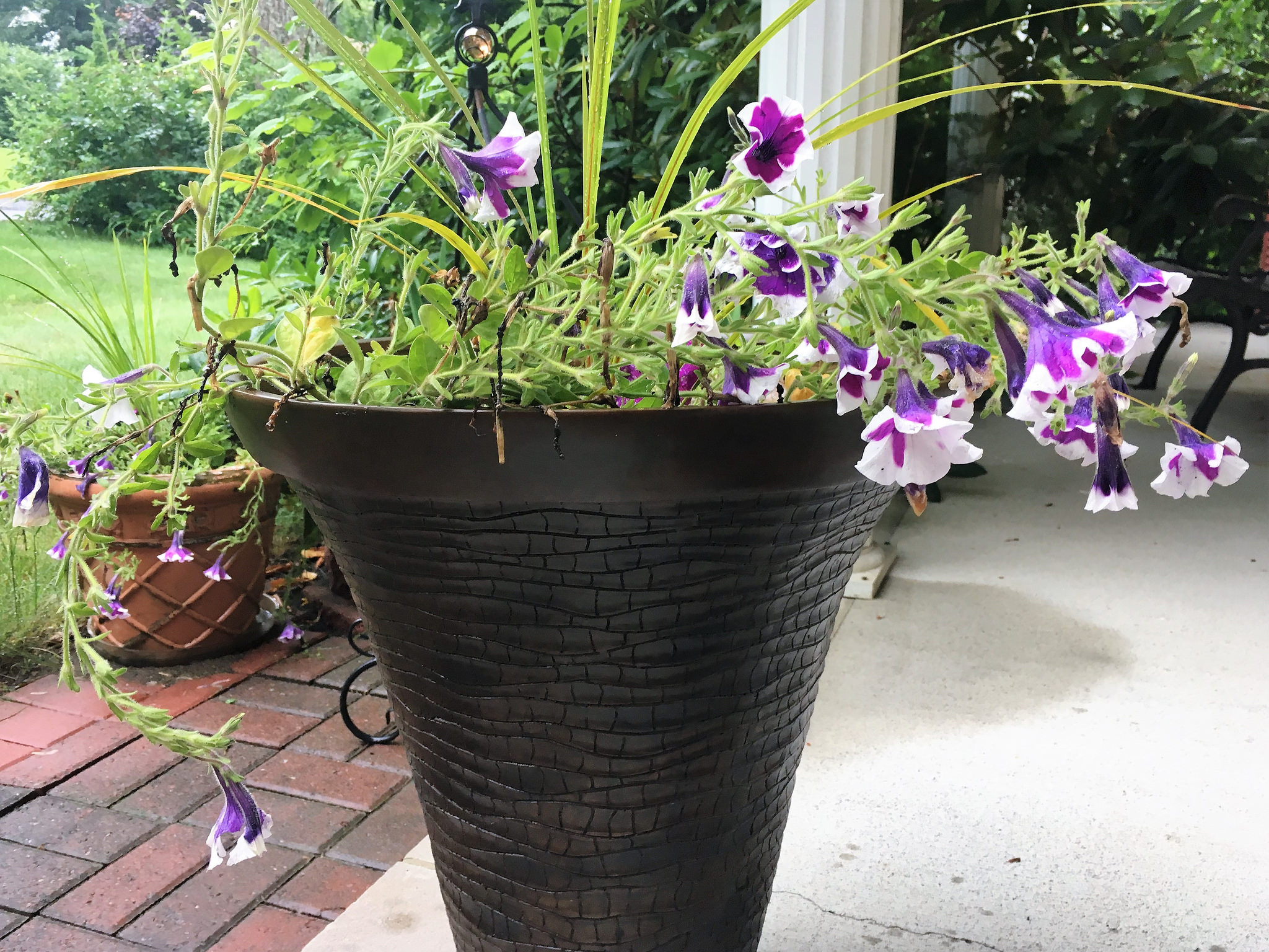 gift giving - pot for plants - gift for mom