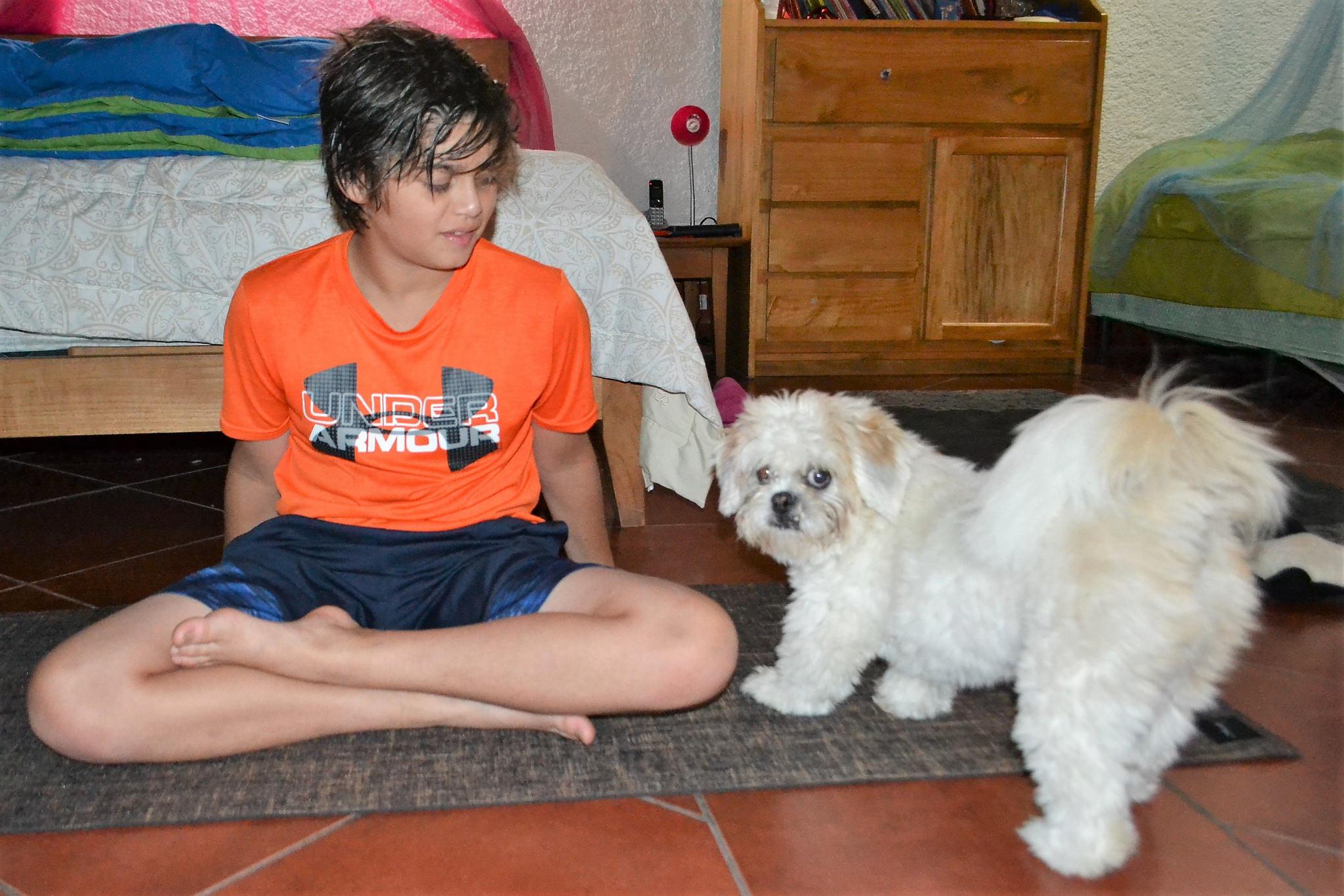 yoga mats for kids, yoga mats for dogs