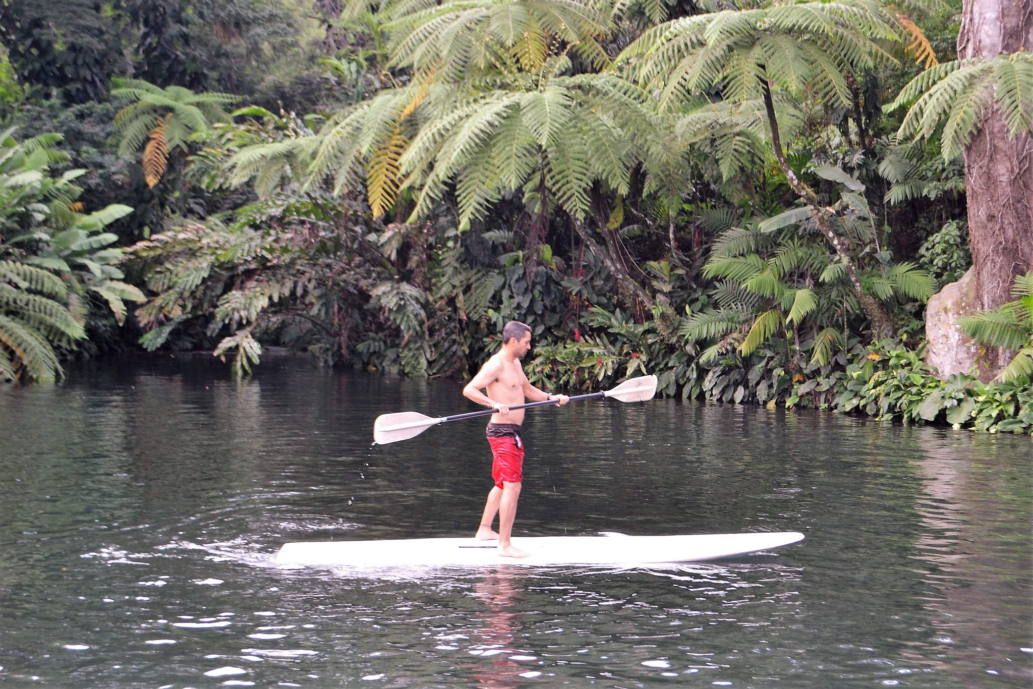 paddle boarding in gautemala
