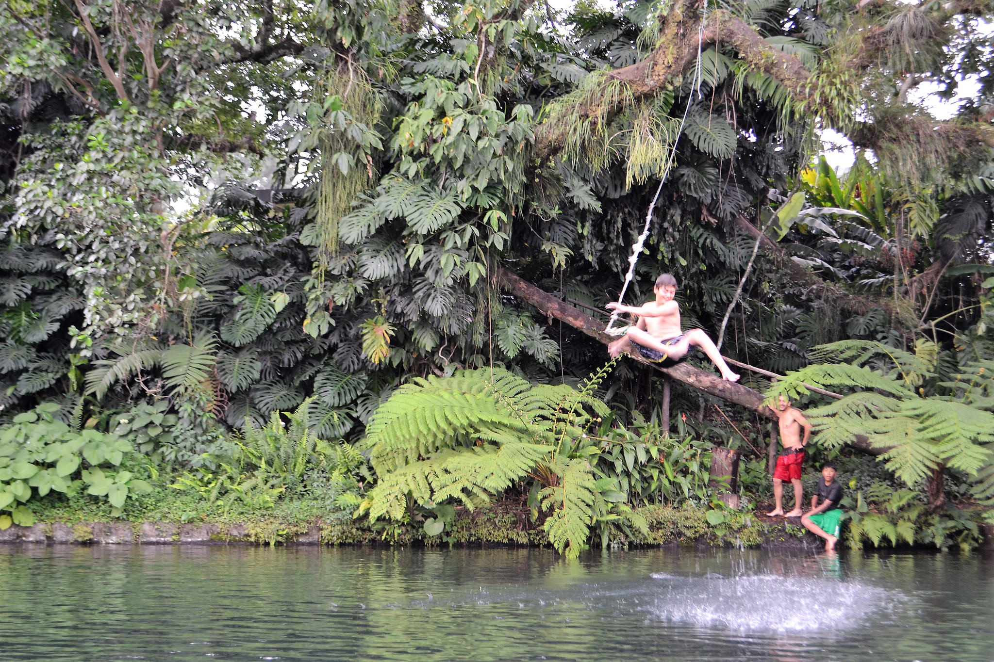 tarzan swing, kids and outdoors adventures