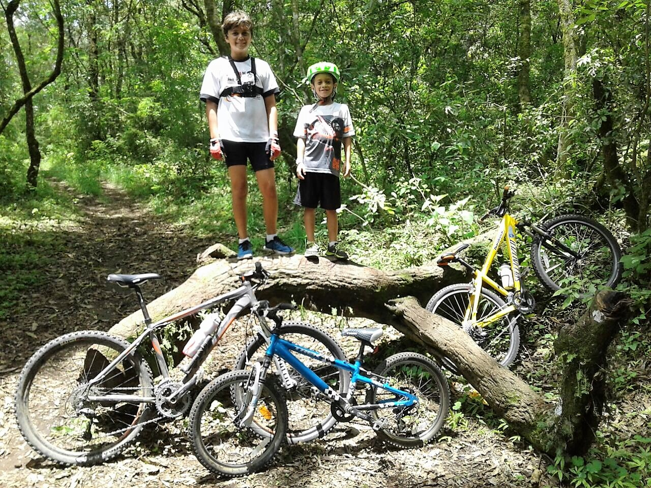 kids on bikes, mountain bikes for kids