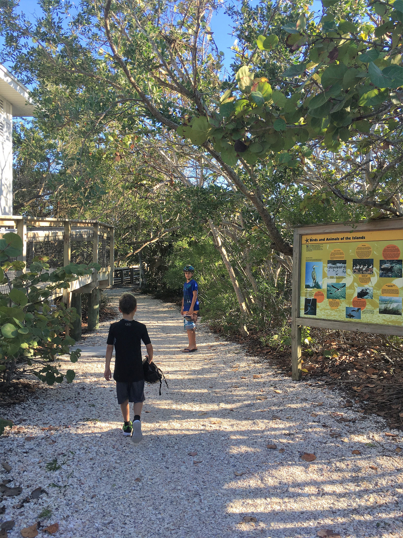 What to see in Manasota KEy Florida - Stump Pass State Park