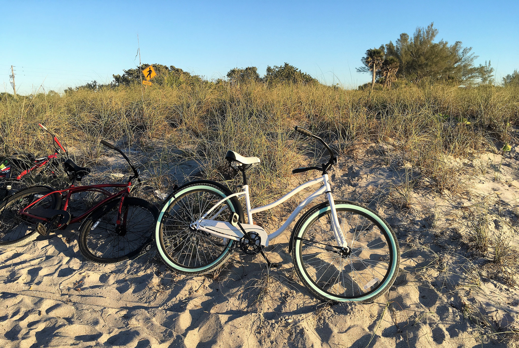 Things to do in Manasota Key Florida - bike rentals