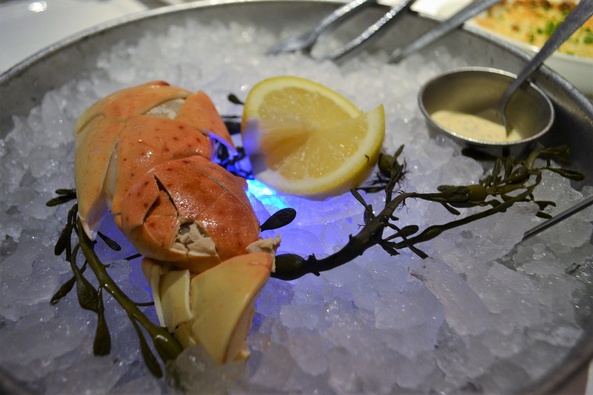 Palm Beach Dining Experience - florida Stone Crab