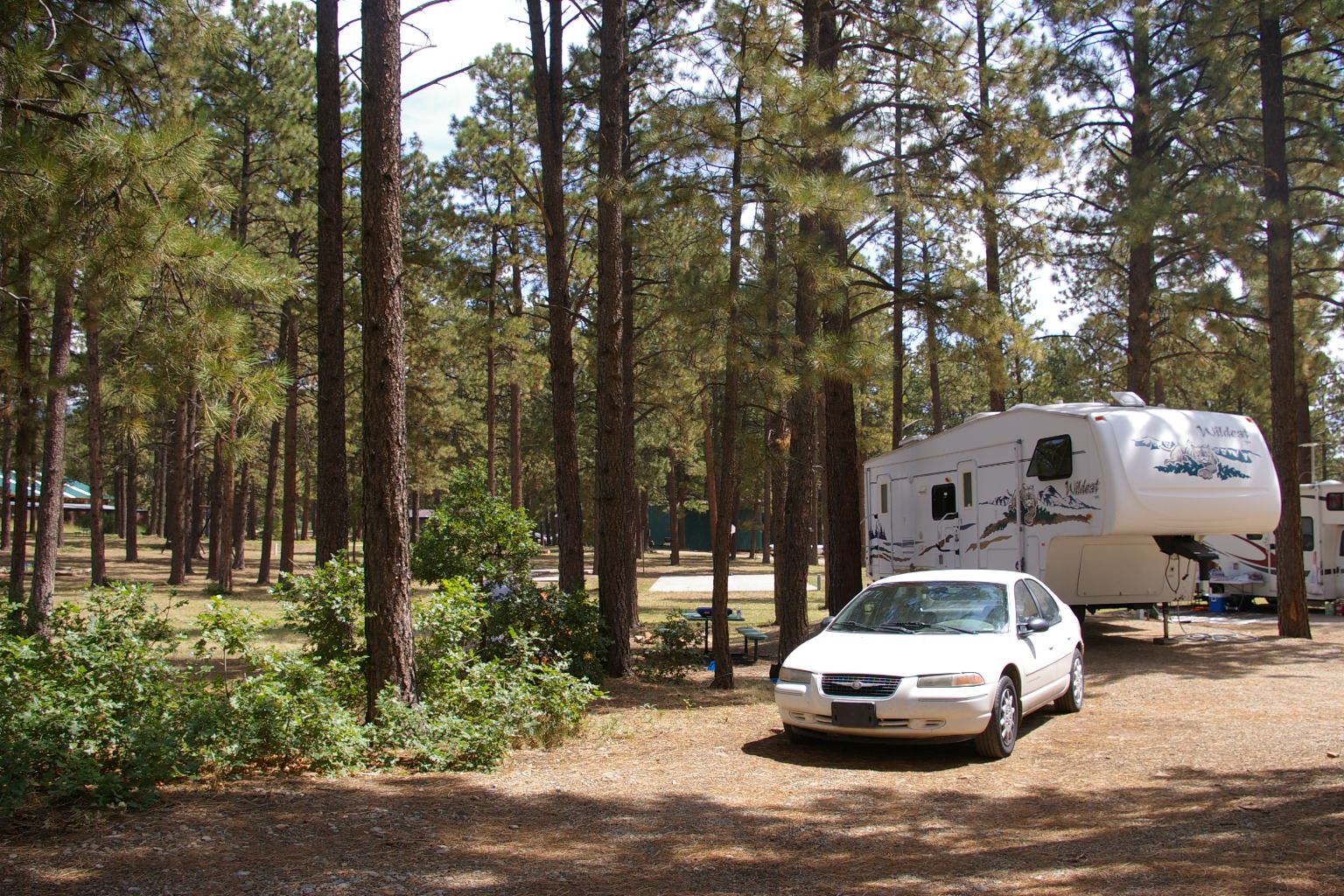 Tips on How to Carry Bicycles inside Your RV? - Bicycle Rack