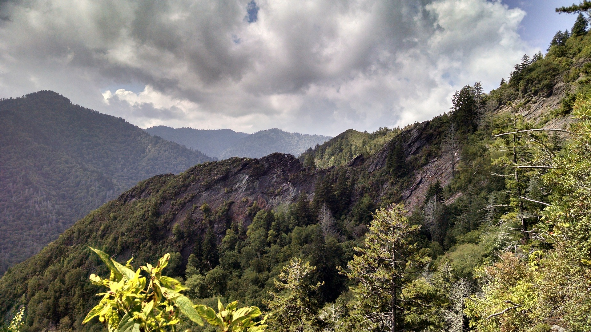 Camping in Great Smoky Mountains – What You Need to Know