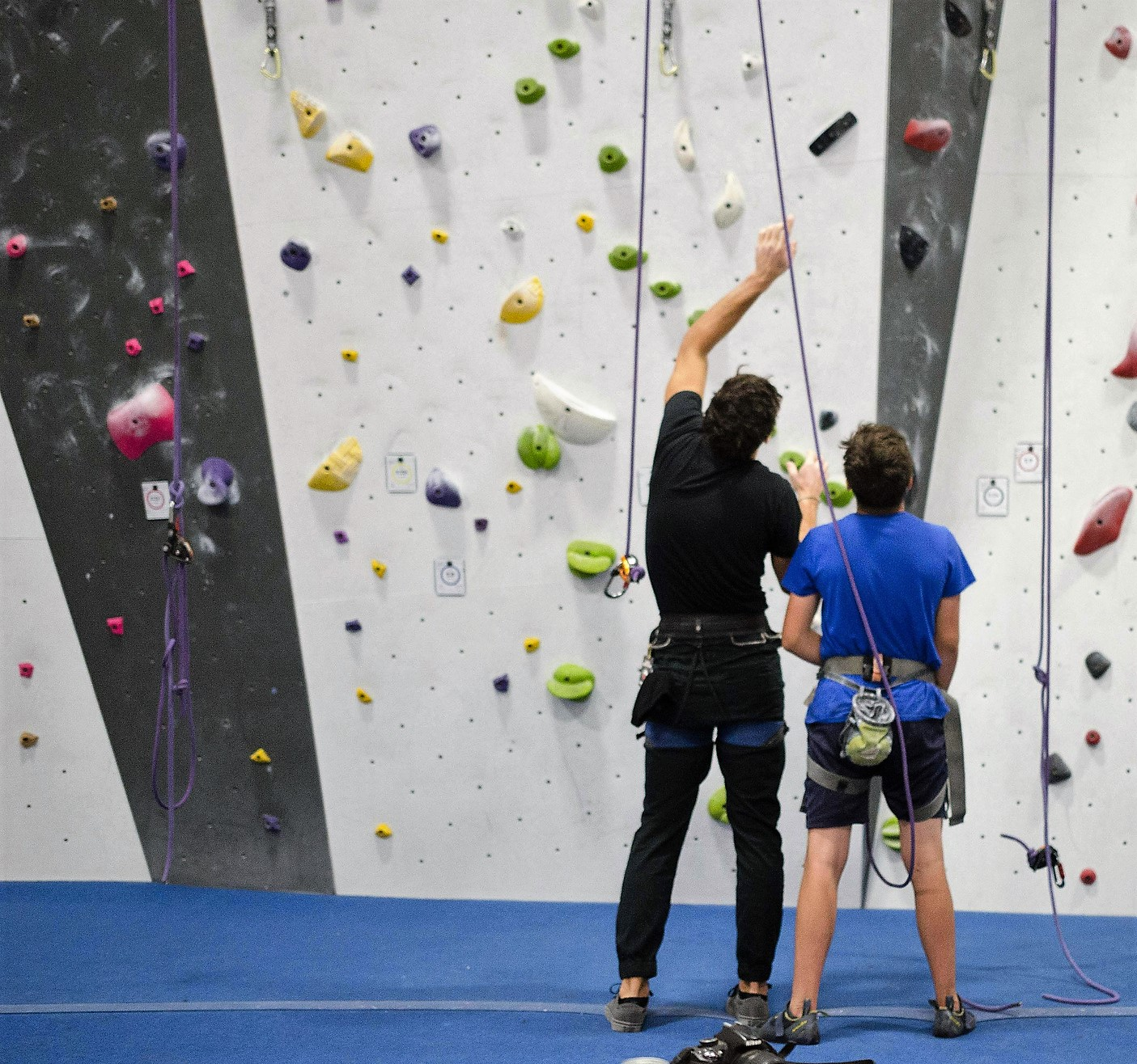 Travel Like a Local Immerse in Rock Climbing (Indoor Climbing Gym)