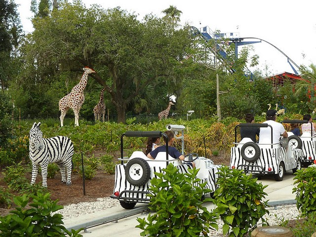 Sightseeing in Orlando - natural sites