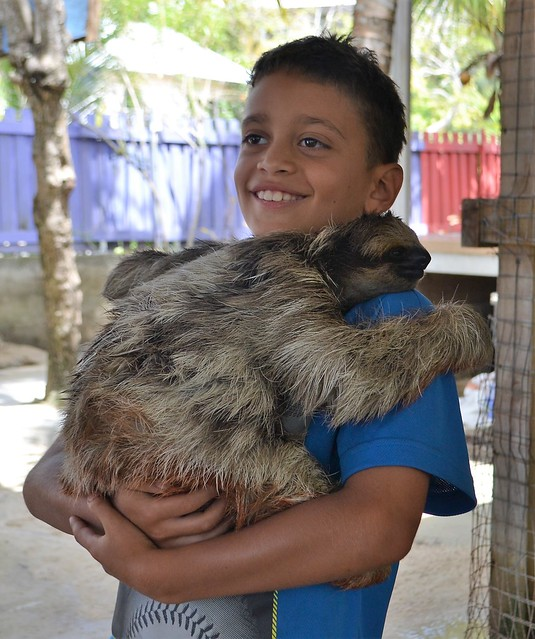 honduras travel - Daniel Johnson's Sloth and Monkey Roatan