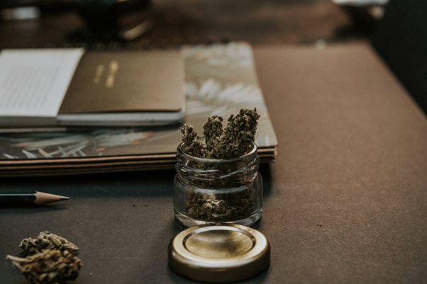 How to Pairing CBD And Immune System Support