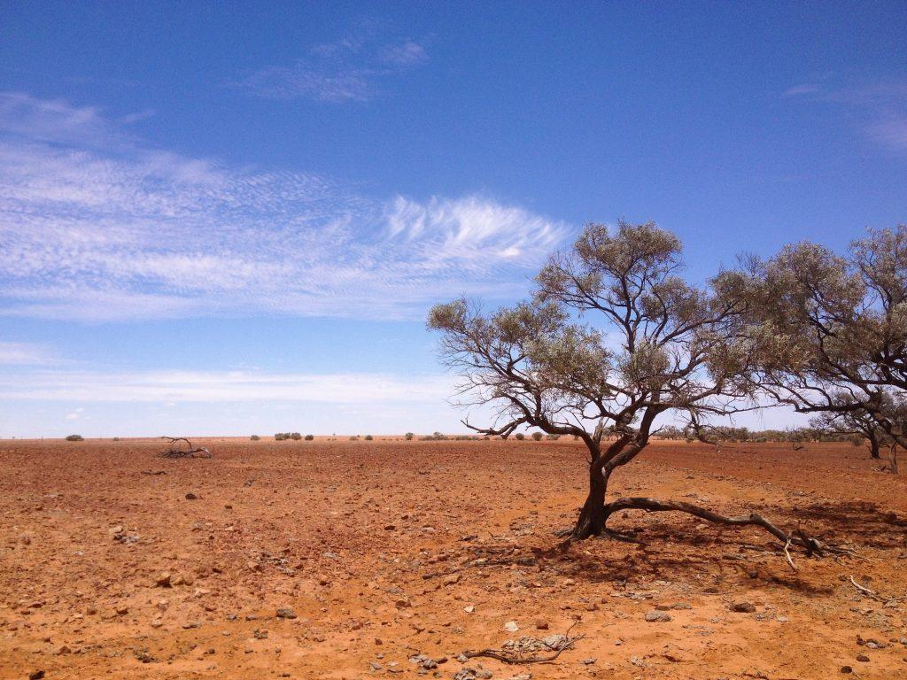 What Does Australia's Simpson Desert Offer the Traveler?